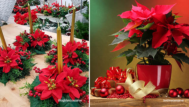 centros de mesa navideños flores